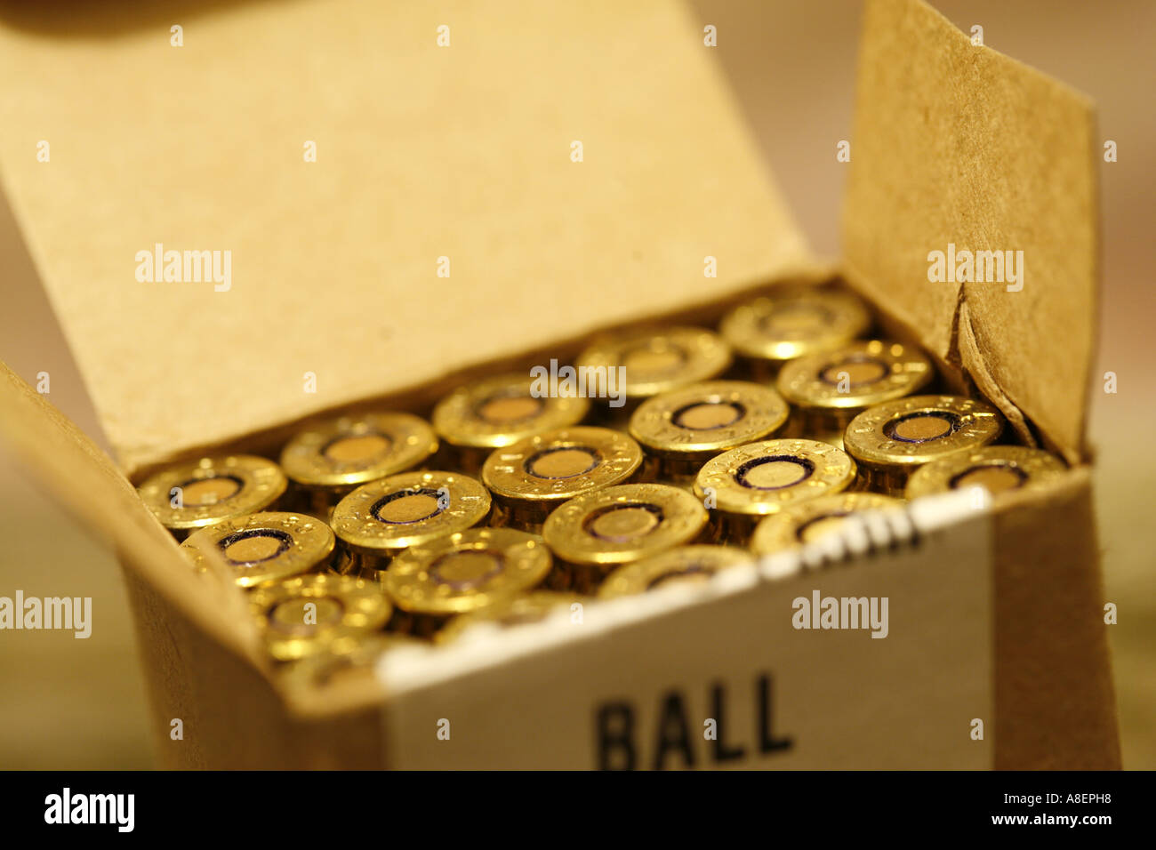 full open box of ammunition 308 762 rifle cartridge bullets live rounds - Stock Image
