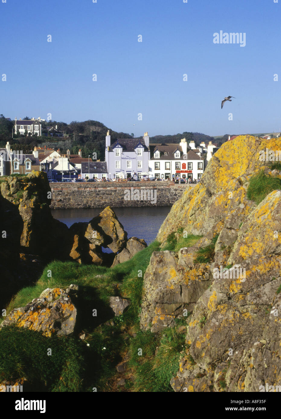 dh Harbour PORTPATRICK DUMFRIES Rocky harbour houses waterfront sea seagull bird Stock Photo