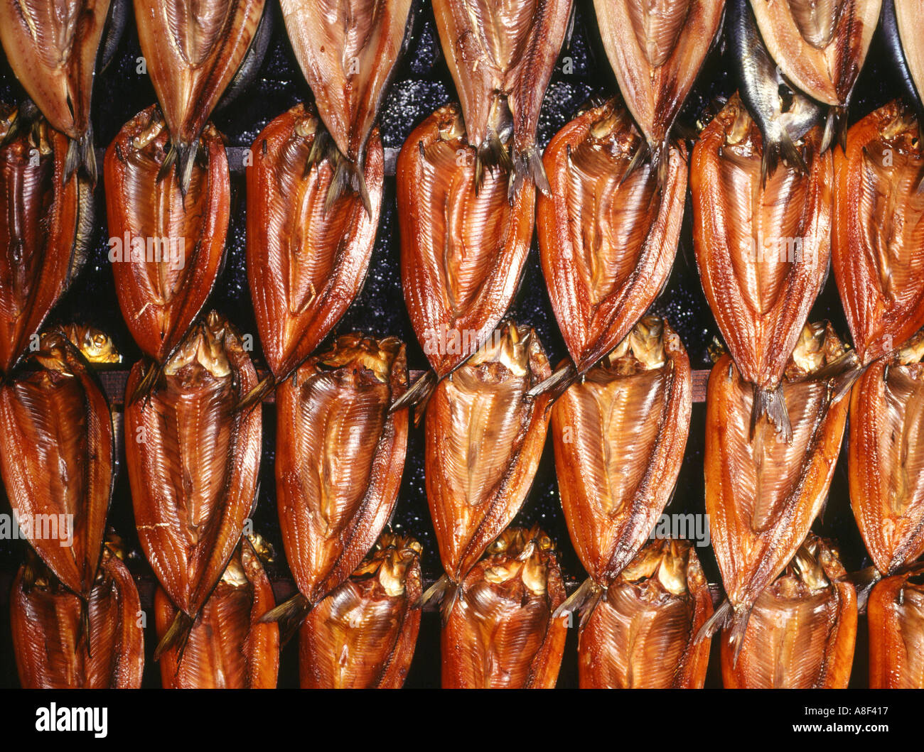 dh  FISH SMOKED UK Rows of smoked kippers in smoking oven preserved - Stock Image