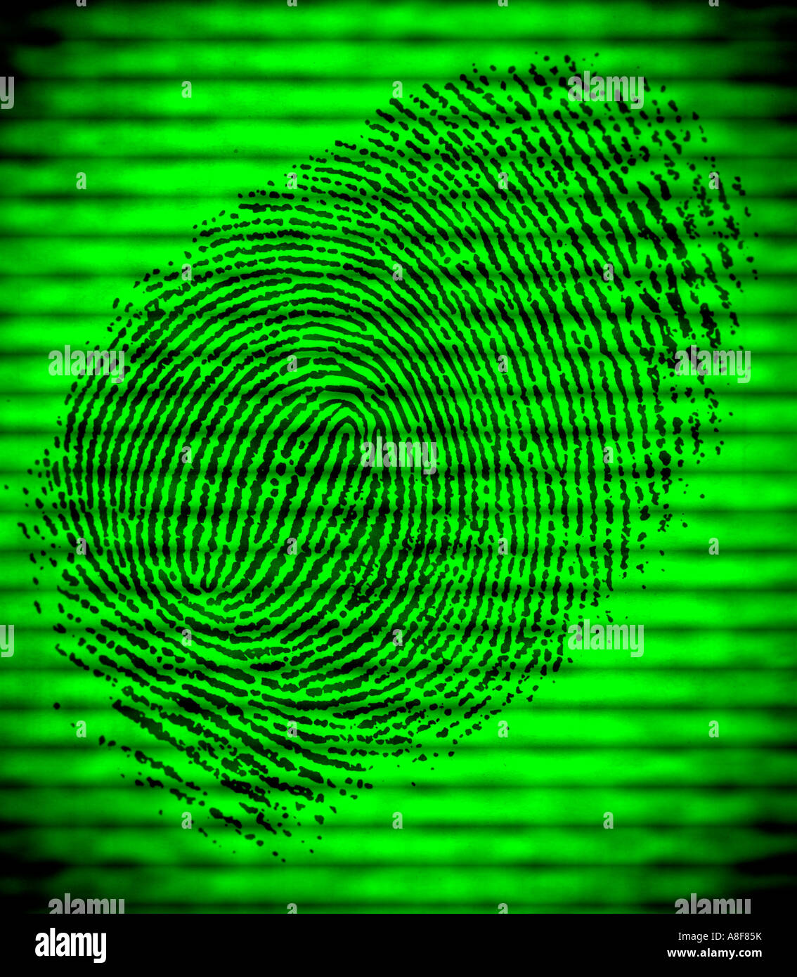 closeup of fingerprint displayed on a closed circuit security device for validation - Stock Image