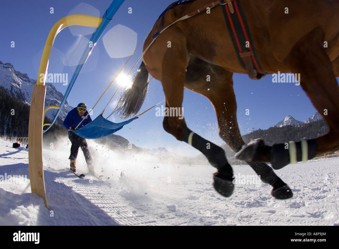 Ski Jouring (racing) a Horse at the White Turf Festival on the frozen lake at St Moritz, Switzerland Stock Photo