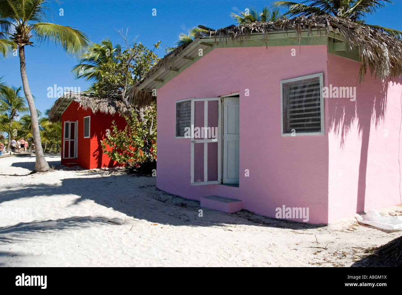 Colourful beach houses with roofs thatched with palm leaves stand on a white sandy beach amid Palm trees,Catalina - Stock Image