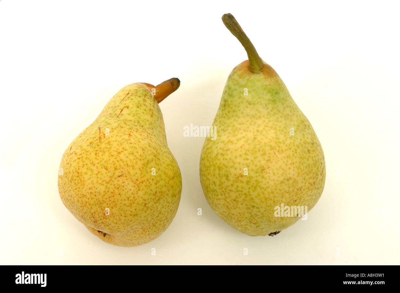 Green Williams pears supermarket bought and in normal shop condition - Stock Image