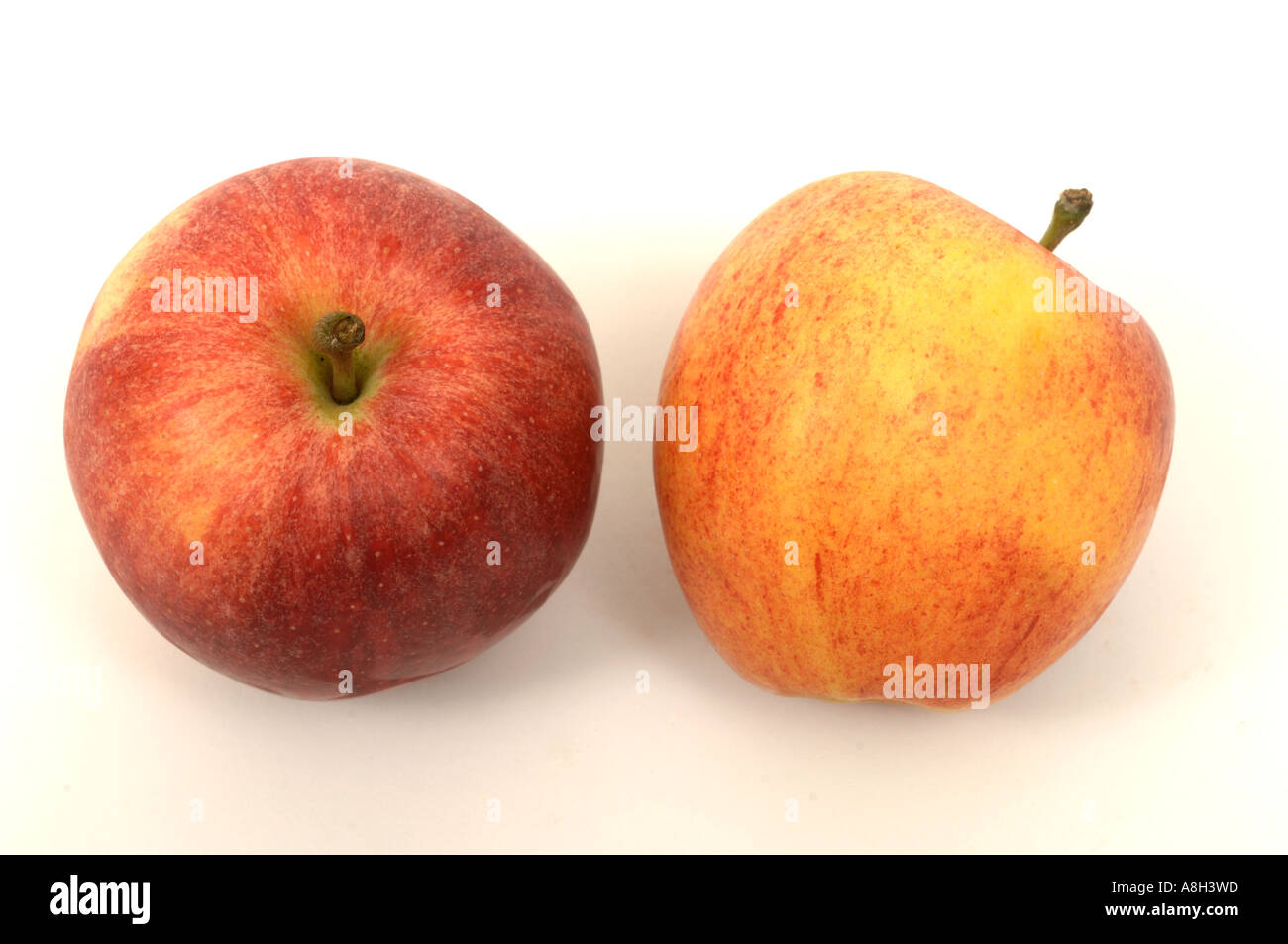 Royal Gala apples supermarket bought and in normal shop condition - Stock Image