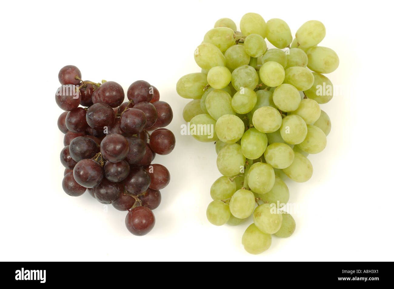 Red white grapes supermarket bought and in normal shop condition - Stock Image