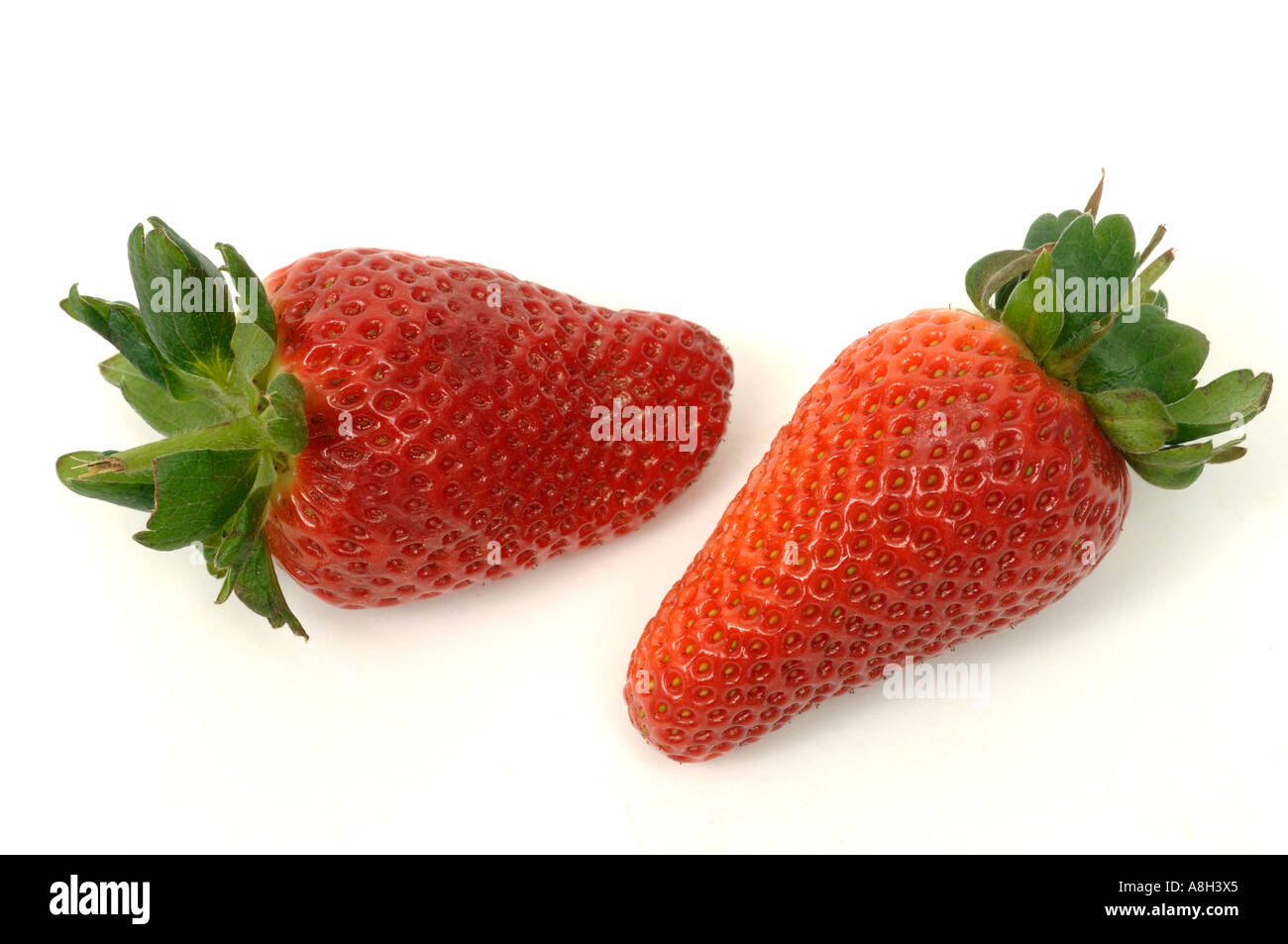 Spanish strawberry fruit supermarket bought and in normal shop condition - Stock Image