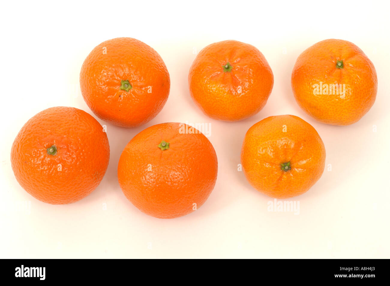Satsumas clementines supermarket bought and in normal shop condition - Stock Image