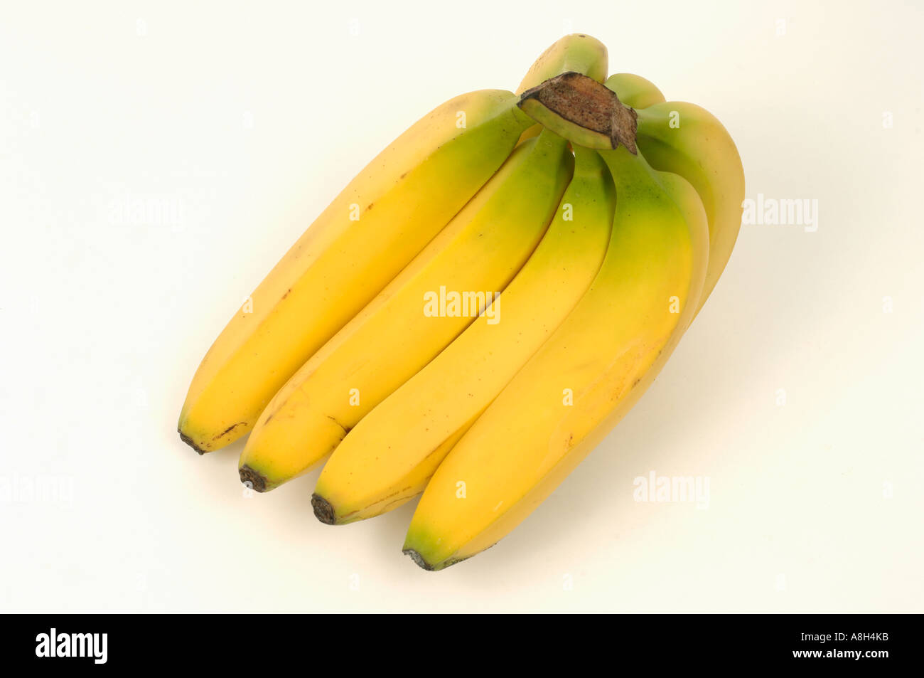 Bunch of bananas supermarket bought and in normal shop condition - Stock Image