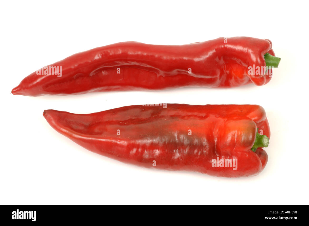 Vegetable produce typical supermarket bought sweet capsicum peppers Stock Photo