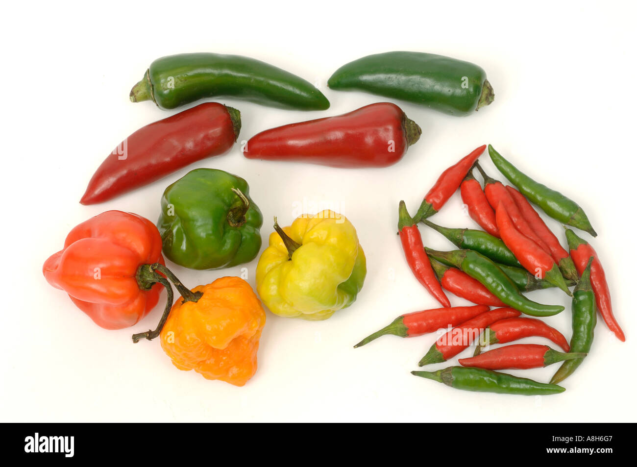 Vegetable produce typical supermarket bought mixed types of chilli peppers - Stock Image