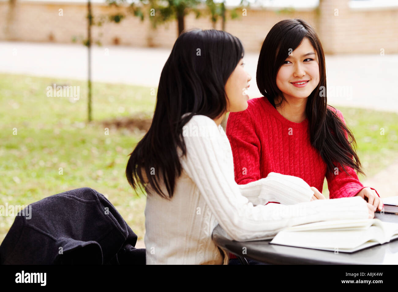 Two young women sitting in a college campus and talking to each other - Stock Image