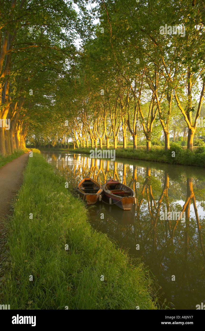 row boats on the Canal du Midi nr Carcassonne Languedoc France - Stock Image