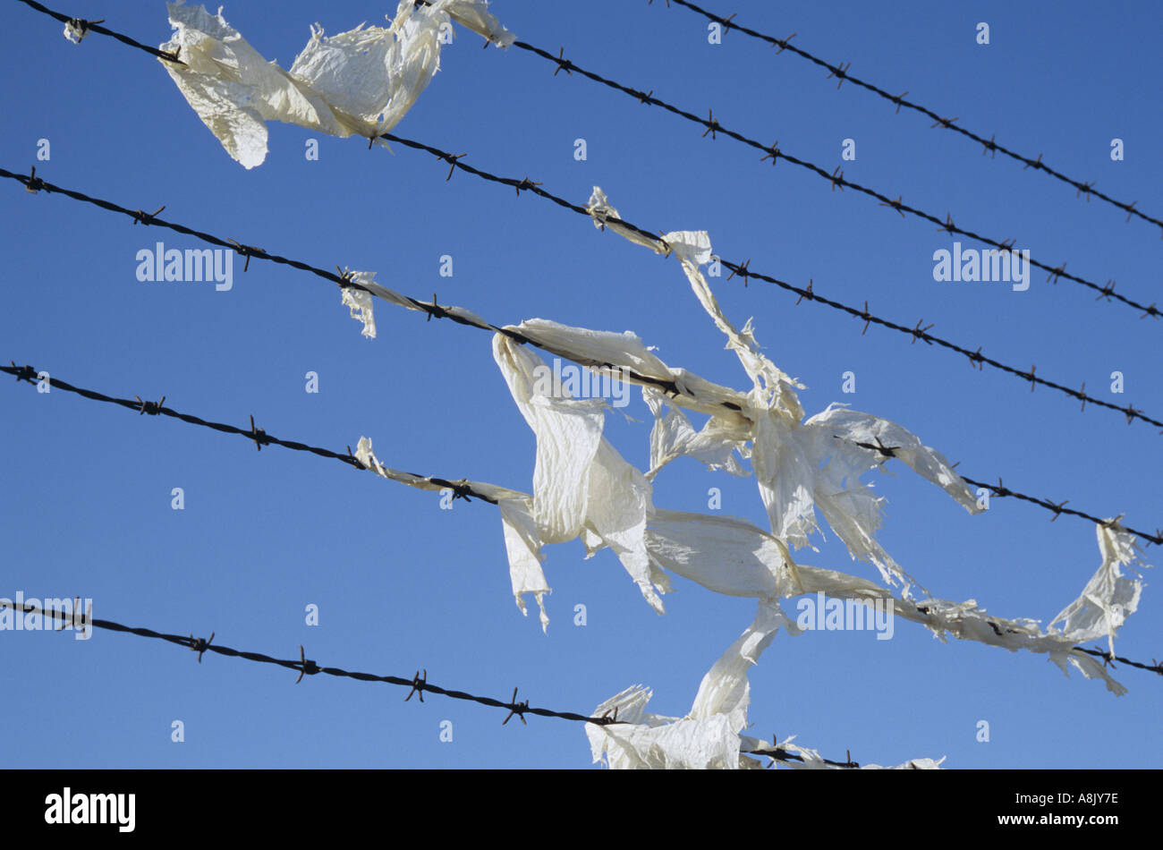 Litter Louts Stock Photos & Litter Louts Stock Images - Alamy