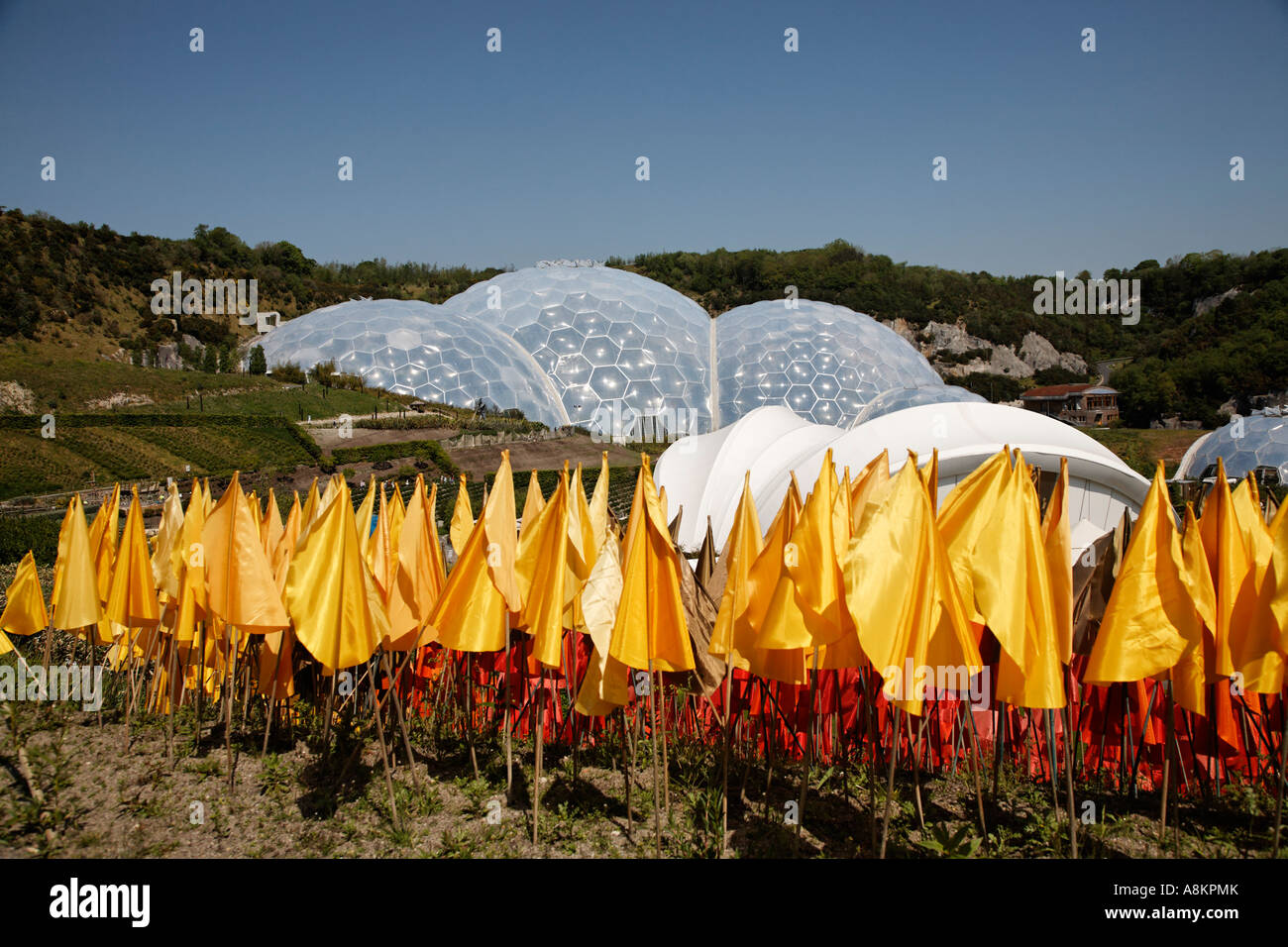 Plastic Flowers At The Eden Project Cornwall U.K. Europe Stock Photo