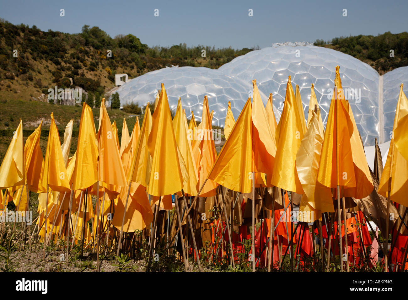 Plastic Flowers At The Eden Project Cornwall U.K. Europe - Stock Image