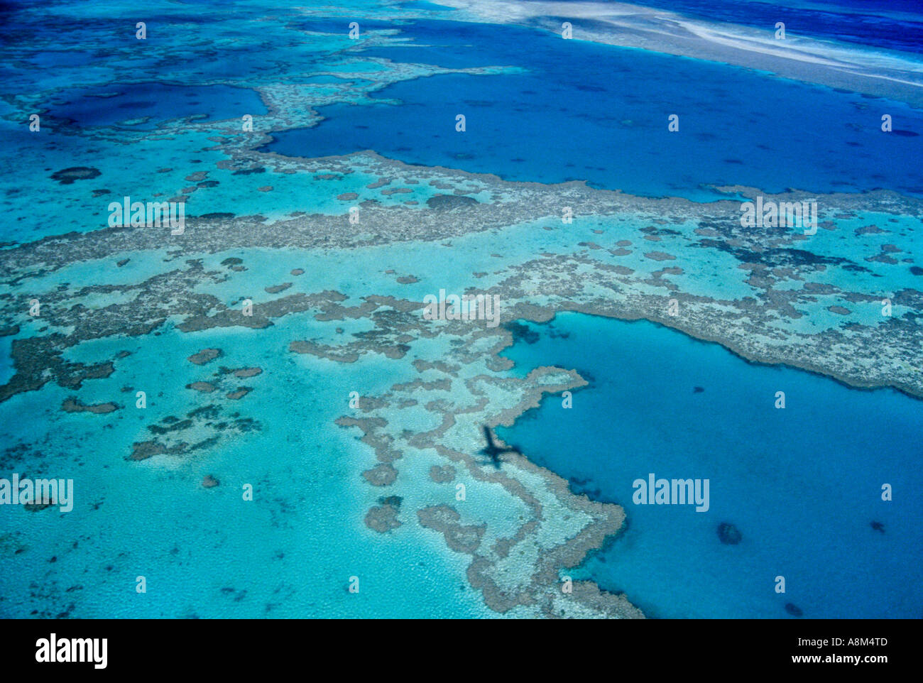 Coral near Hardy Reef Whitsunday Islands National Park Great Barrier Reef Queensland Australia horizontal  Stock Photo