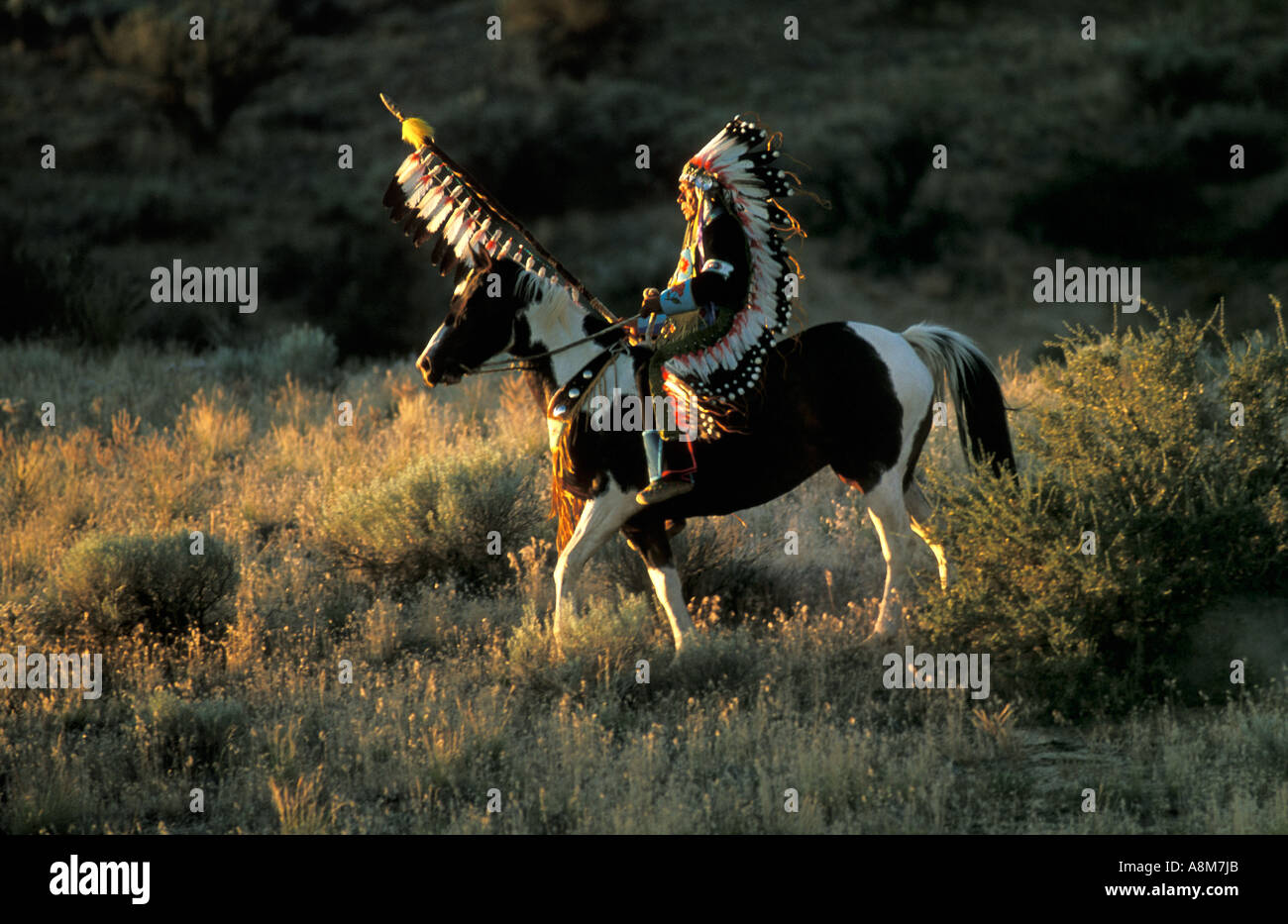 USA IDAHO Native American Indian Man in tradtional dress riding a painted horse Shoshone Bannock Tribe MR - Stock Image