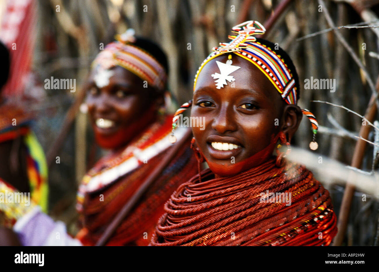Matrimonio In Kenya : Samburu girl at wedding kenya stock photo: 12149748 alamy
