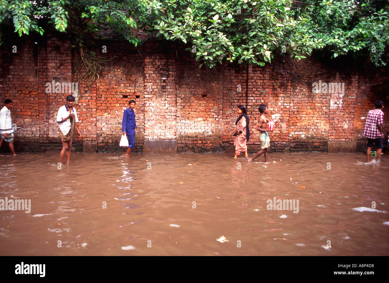 Locals dealing with the floods due to the Monsoon rains in Calcutta - Stock Image