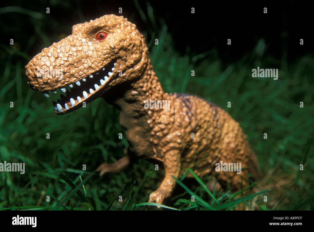 DINOSAUR Plastic Toy Tyrannosaurus - Stock Image