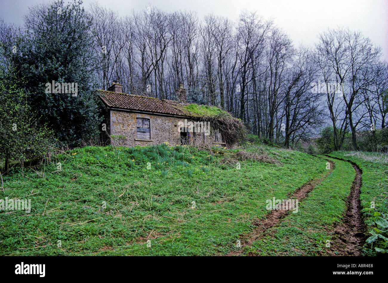 The Way Through the Woods. Deserted stone cottage - Stock Image