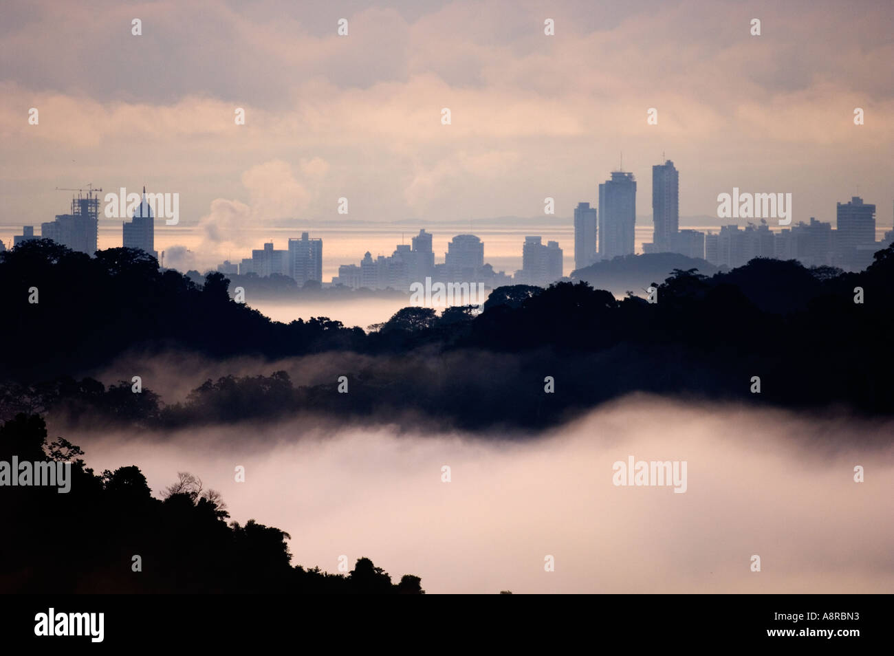 Tropical Rainforest  in Soberiana National Park and the urban jungle of Panama cityviewed at dawn from the Canopy Tower eco-lodg - Stock Image