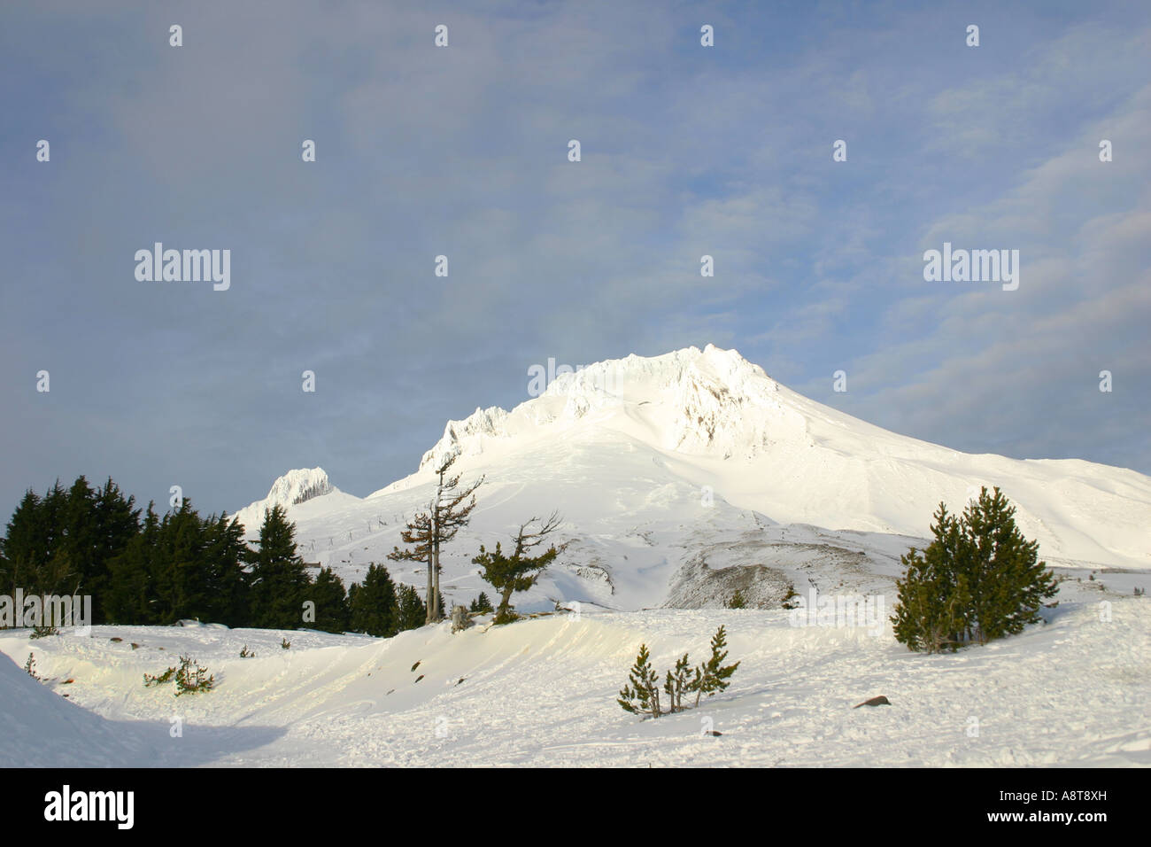 Mt Hood, Snowy Mountain, Blue Sky, Sunshine - Stock Image