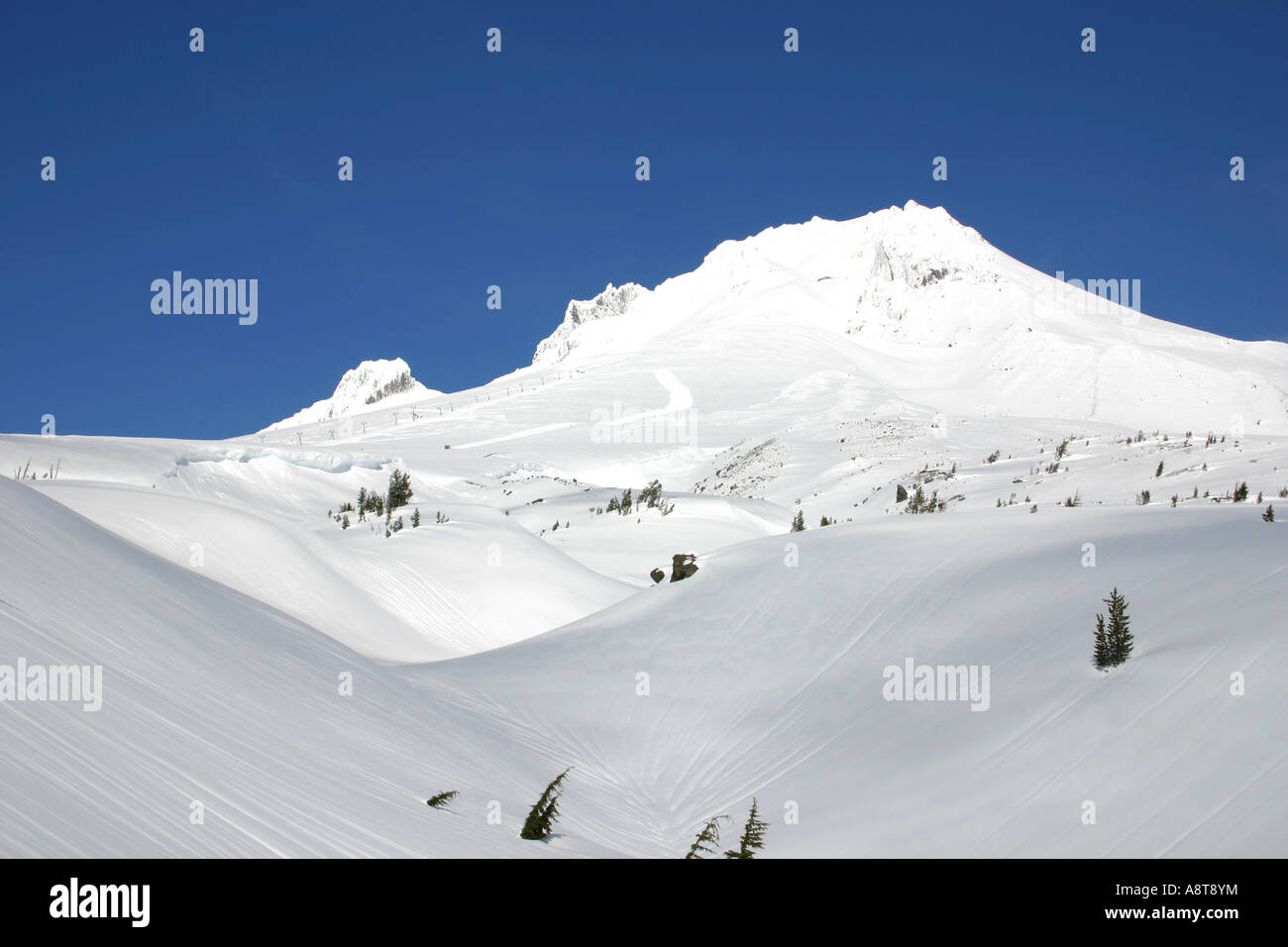 Mount Hood, Oregon -- White, Pure, Beautiful, and Deadly - Stock Image