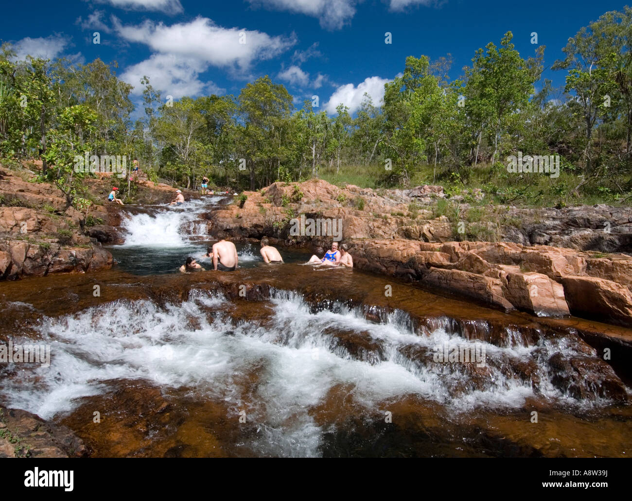 Buley Rockhole pools and stream in Litchfield National Park Northern Territories Australia - Stock Image