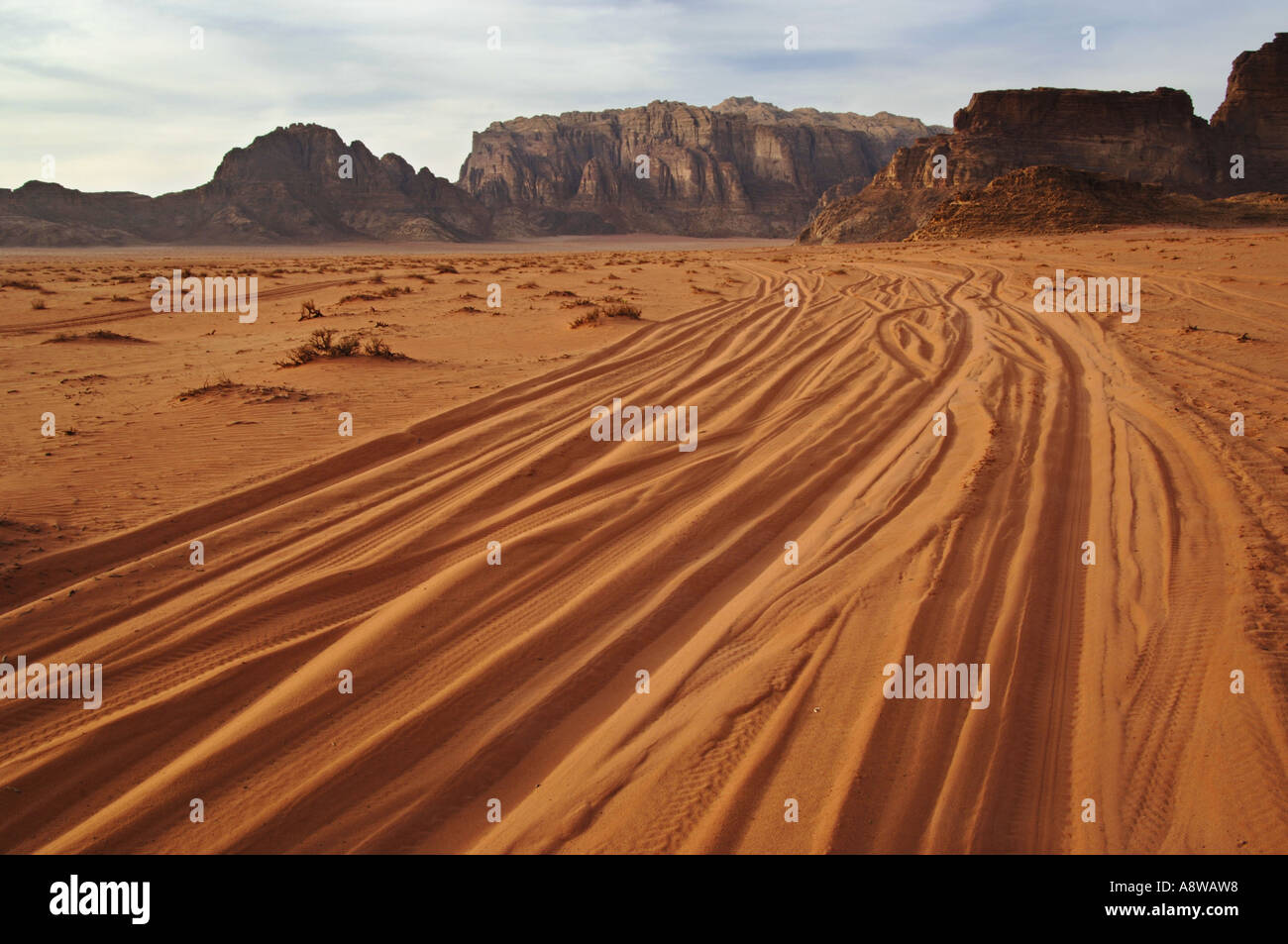 Tyre tracks in the desert landscape of Wadi Rum Protected Area Jordan - Stock Image