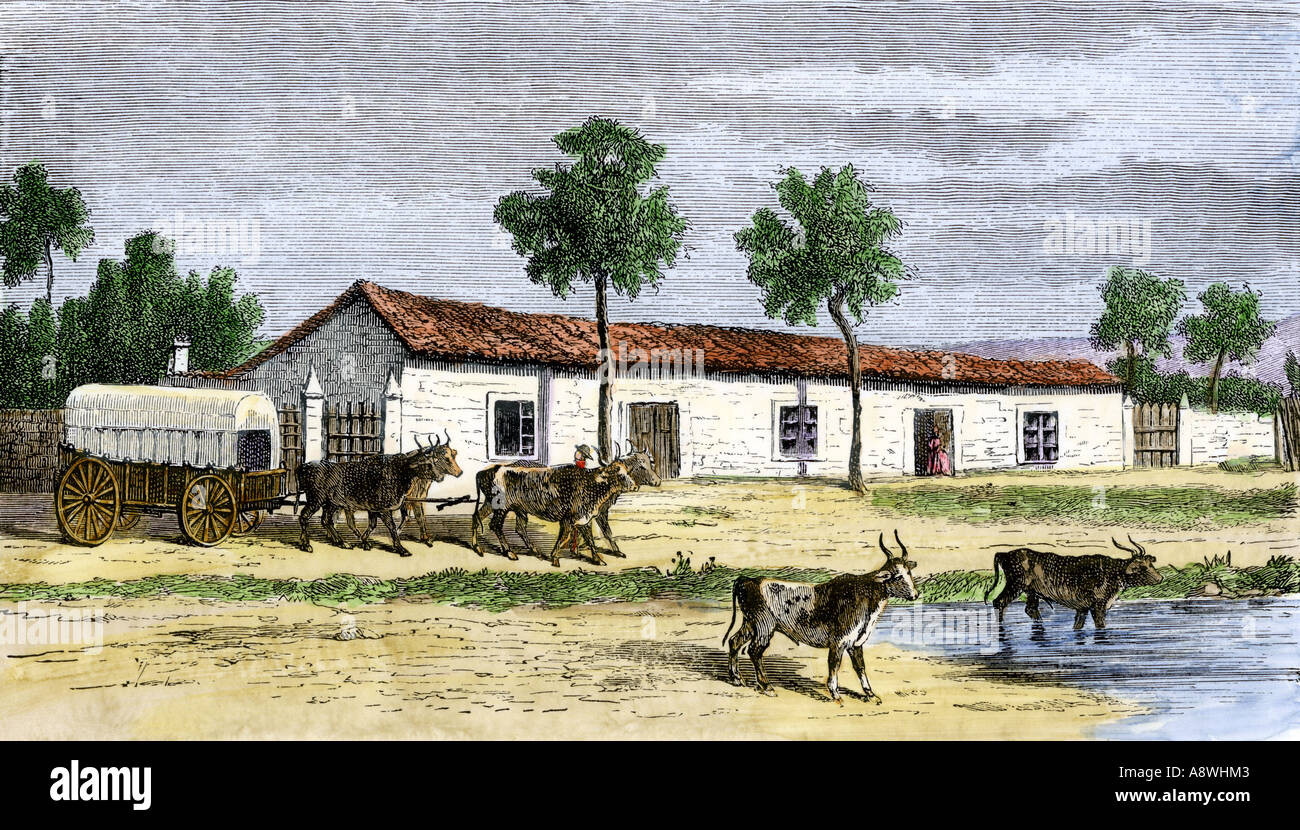 Boer farm in South Africa in the mid 1800s. Hand-colored woodcut - Stock Image