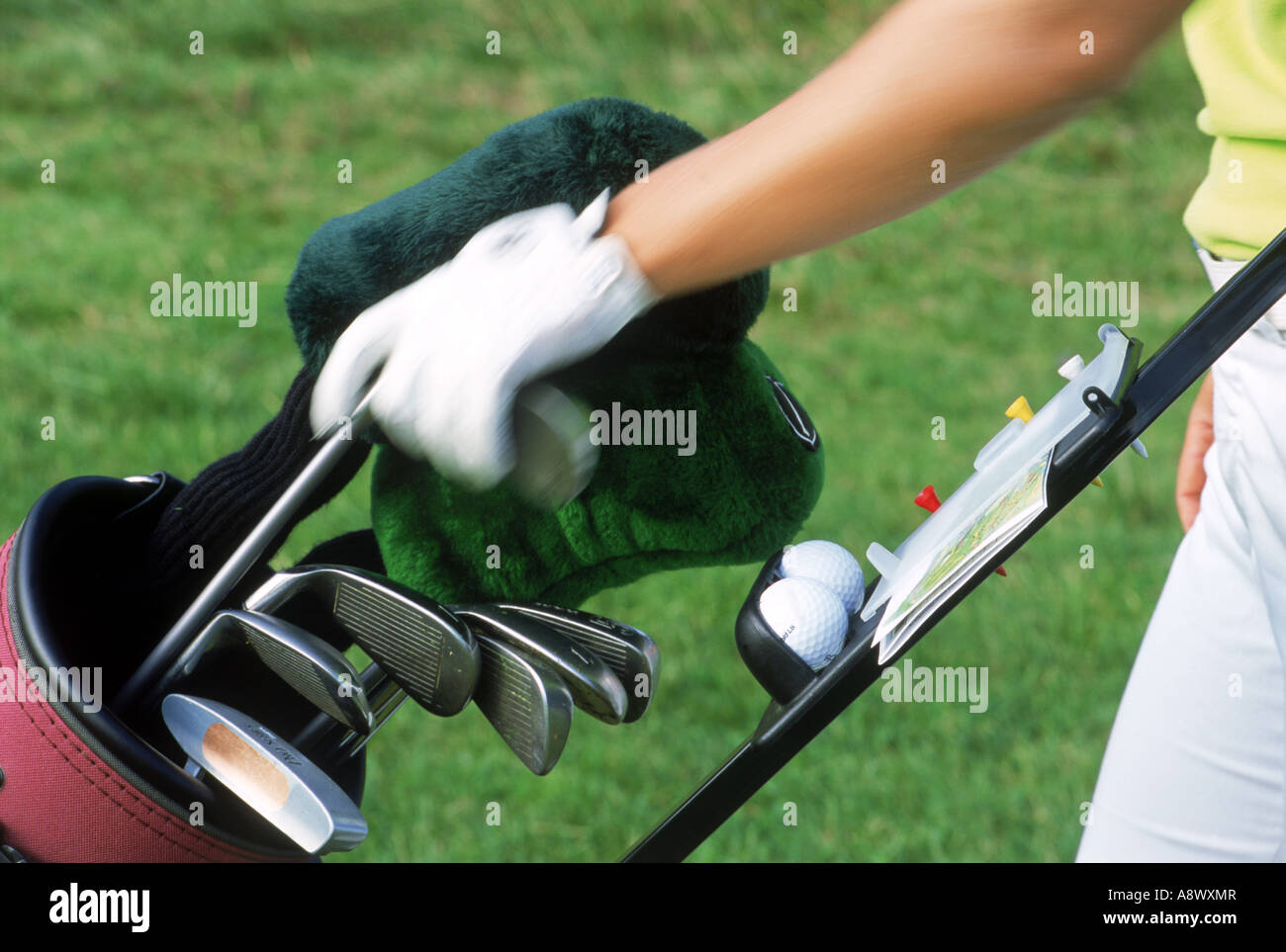Golfer selecting club from golf bag - Stock Image