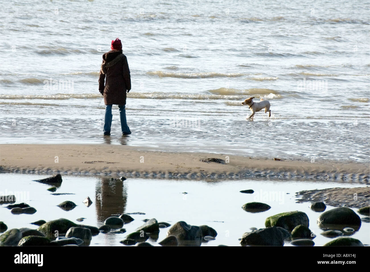 Woman walking her dog on the beach. - Stock Image