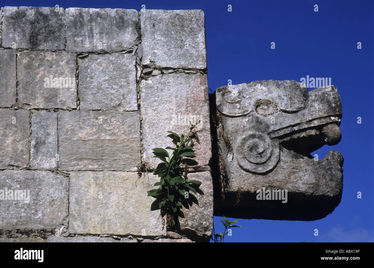 Chichen Itza, Yucatan, Mexico - The Temple Of The Jaguars - Stock Image