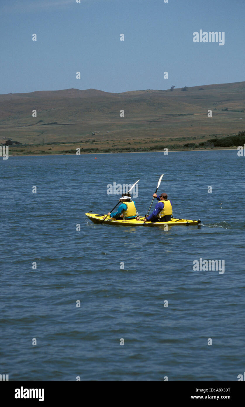 CA California kayakers at Tomales Bay Point Reyes - Stock Image