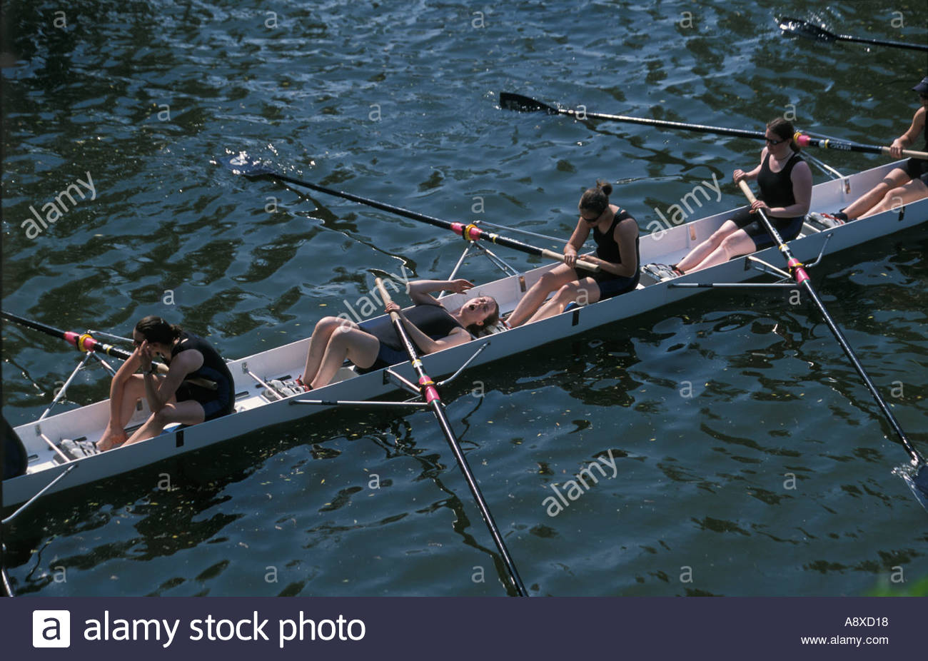 Oxford Bump Races with a distraught and exhausted crew after defeat, UK - Stock Image