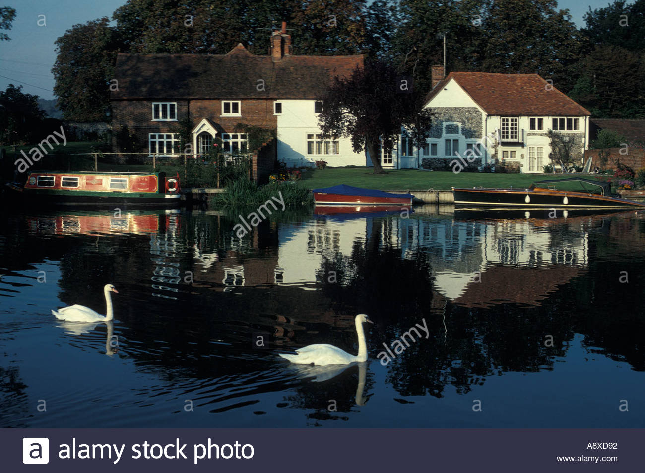 Evening near Hambleden Lock, UK - Stock Image