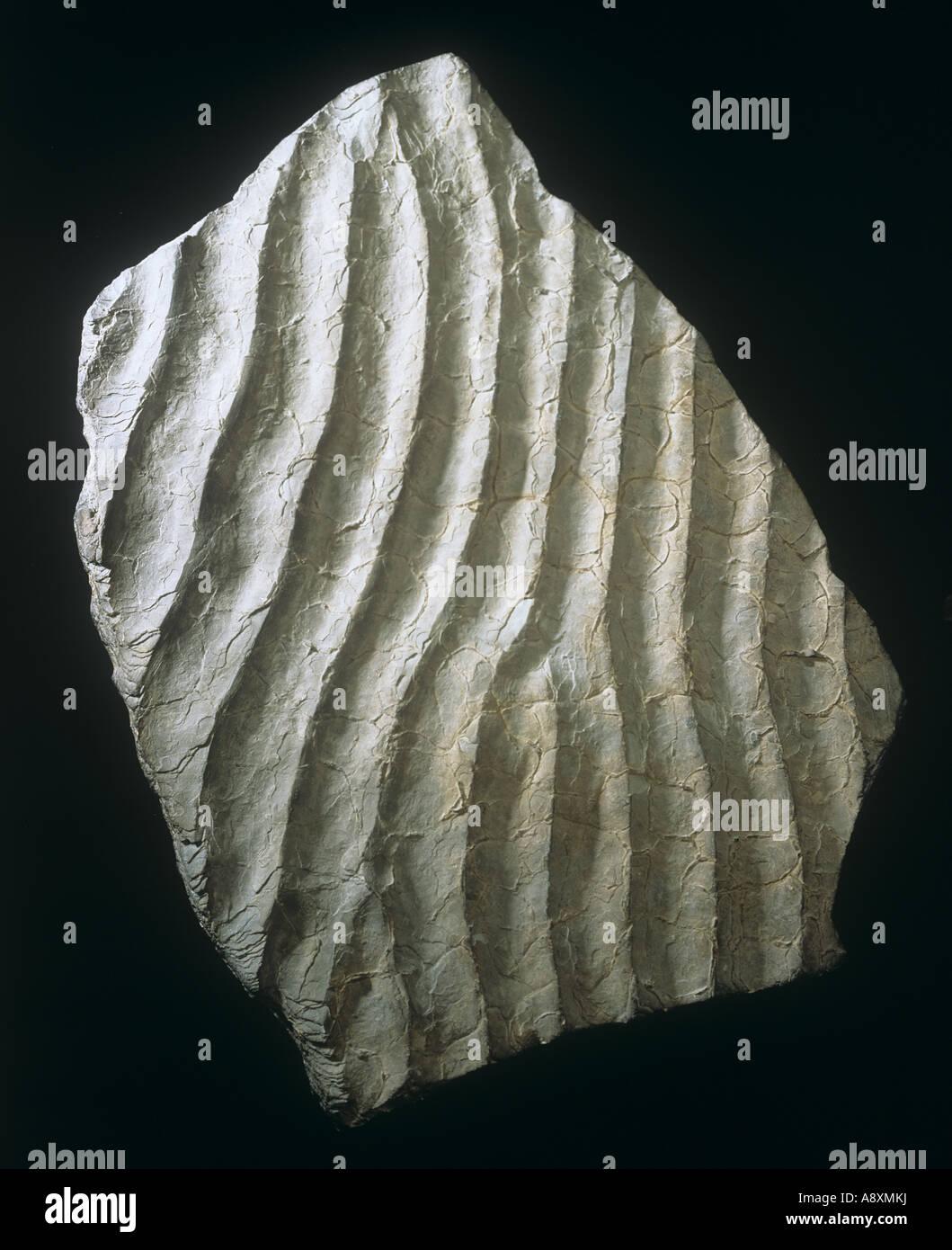 Ripple marked sandstone - Stock Image