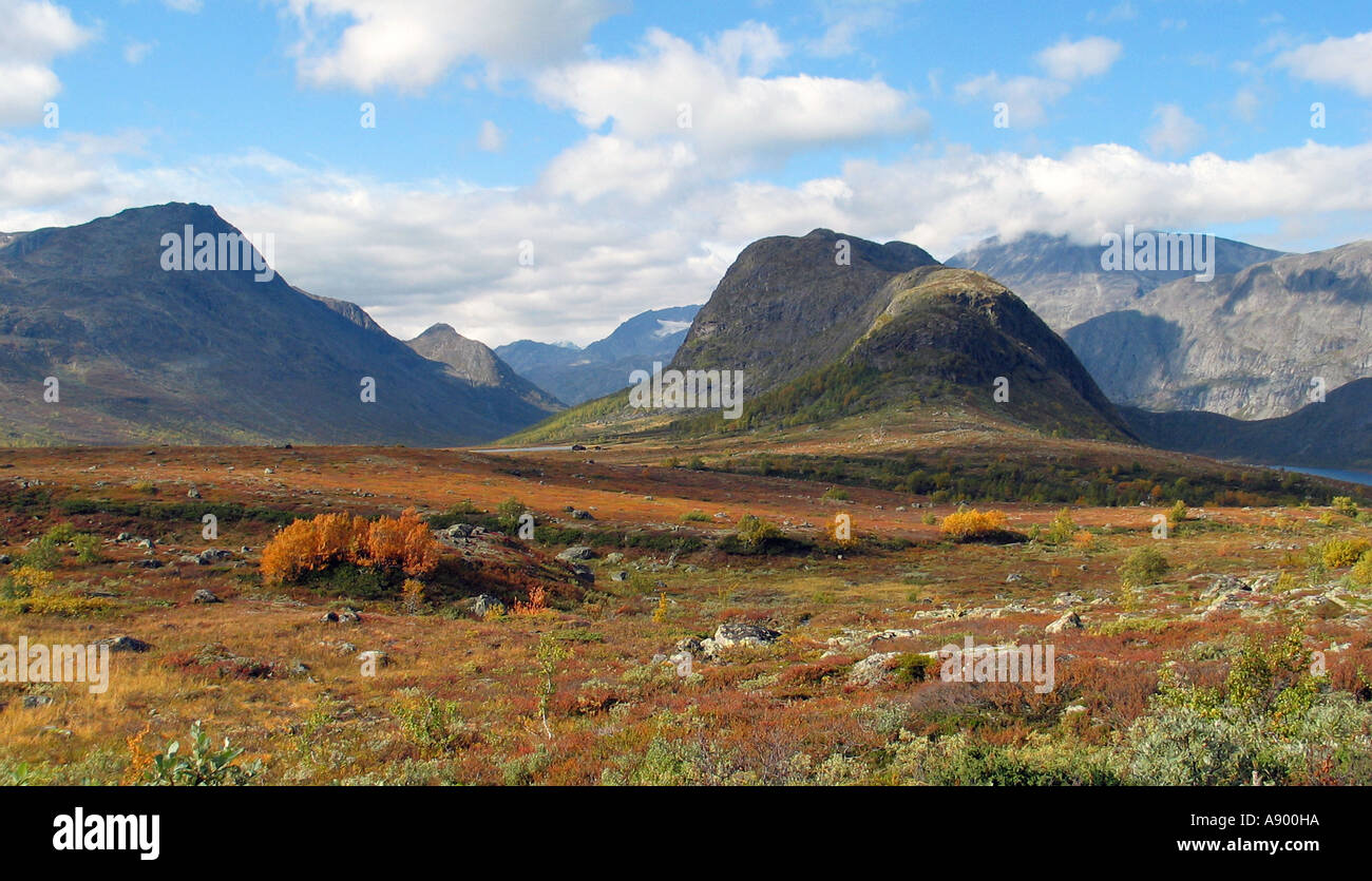 Indian summer Valdresflya, Jotunheimen Norway - Stock Image