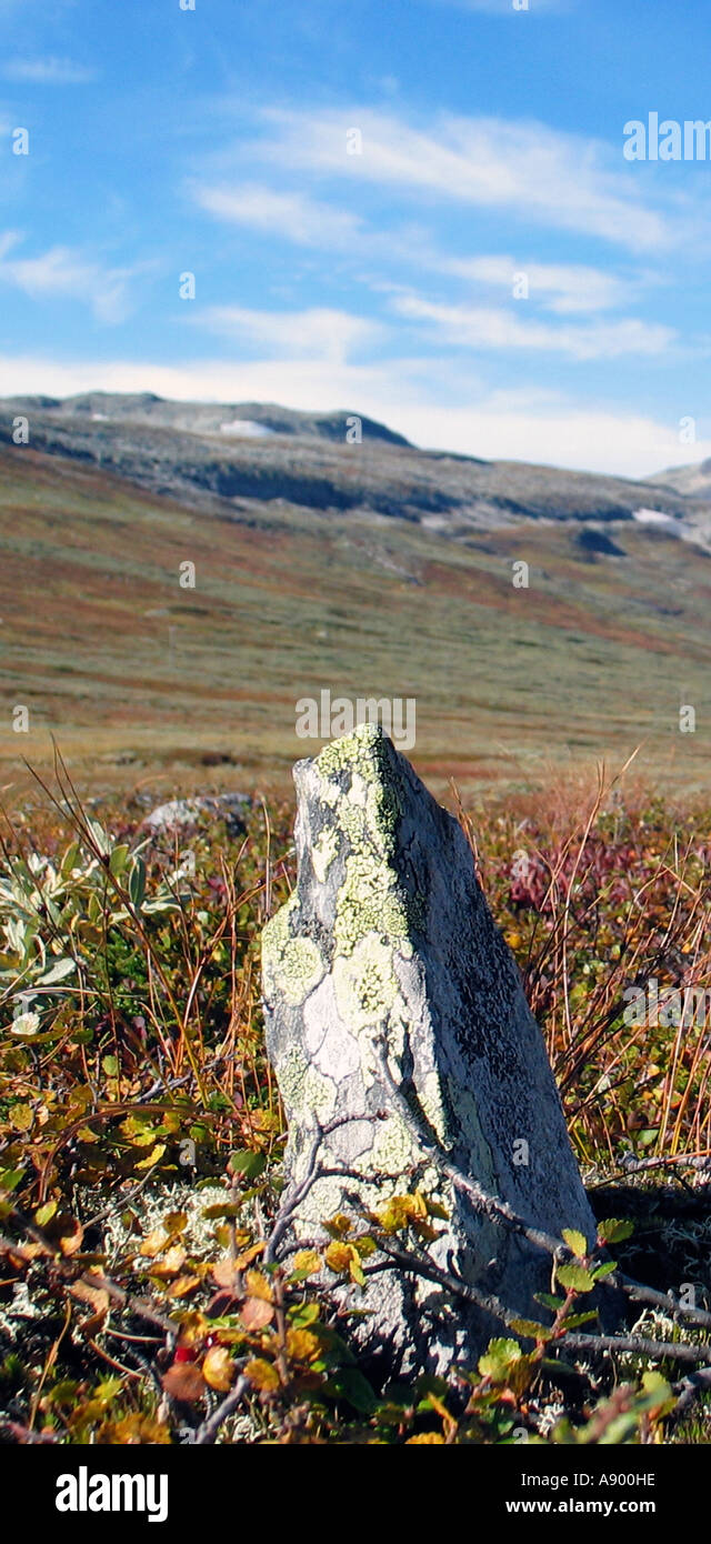 Slettefjell, Valdresflya during Indian summer, Jotunheimen, Norway - Stock Image