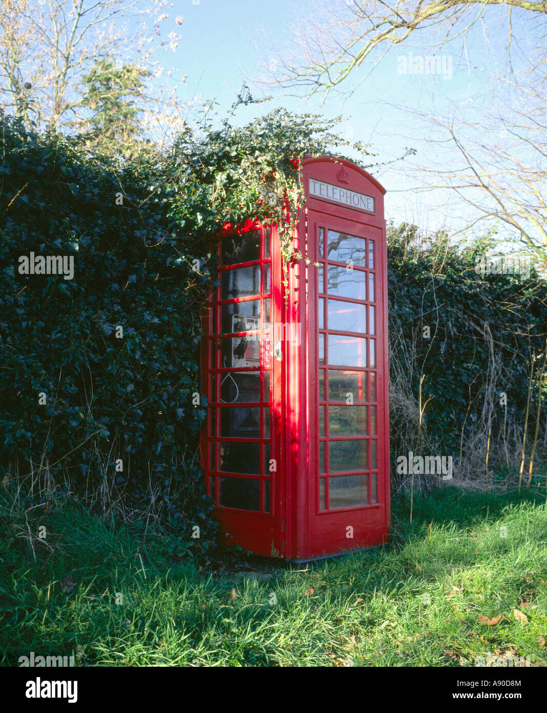 A K6 red telephone kiosk integrated into hedegrow  has stood for many years in village of Somersby Lincolnshire - Stock Image