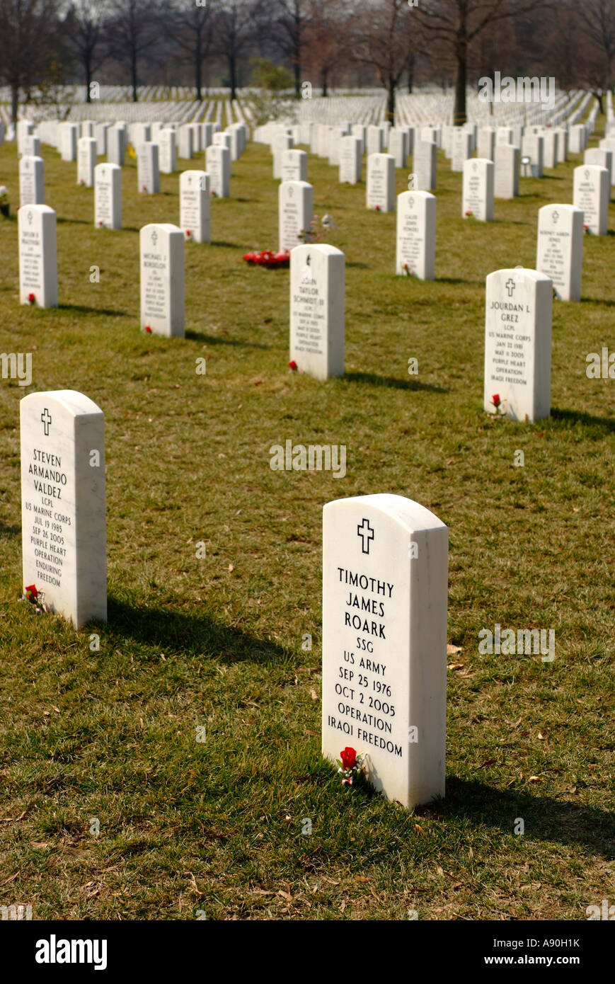 Headstones of Iraq war dead at the Arlington National Cemetery in Arlington - Stock Image