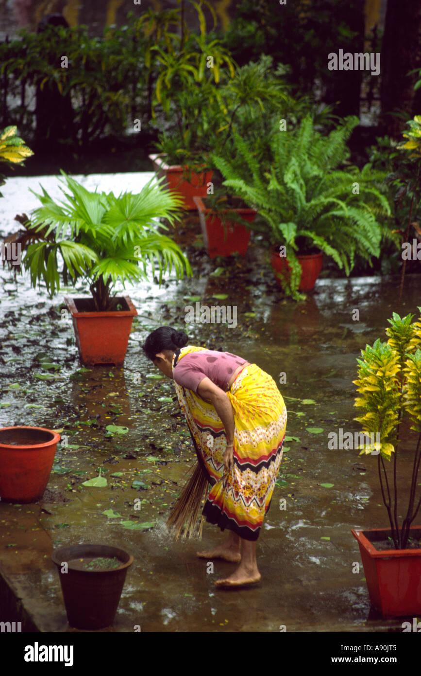 India Goa Panaji monsoon untouchble dalit woman sweeping leaves in public garden - Stock Image