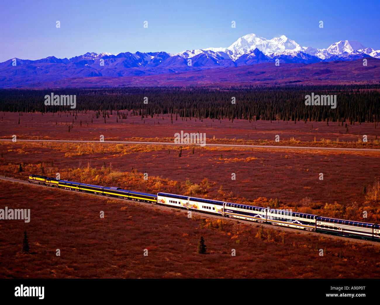 Alaska Railroad and the RCCL Wilderness Express southbound train with Mt. McKinley and the Alaska Range. Stock Photo