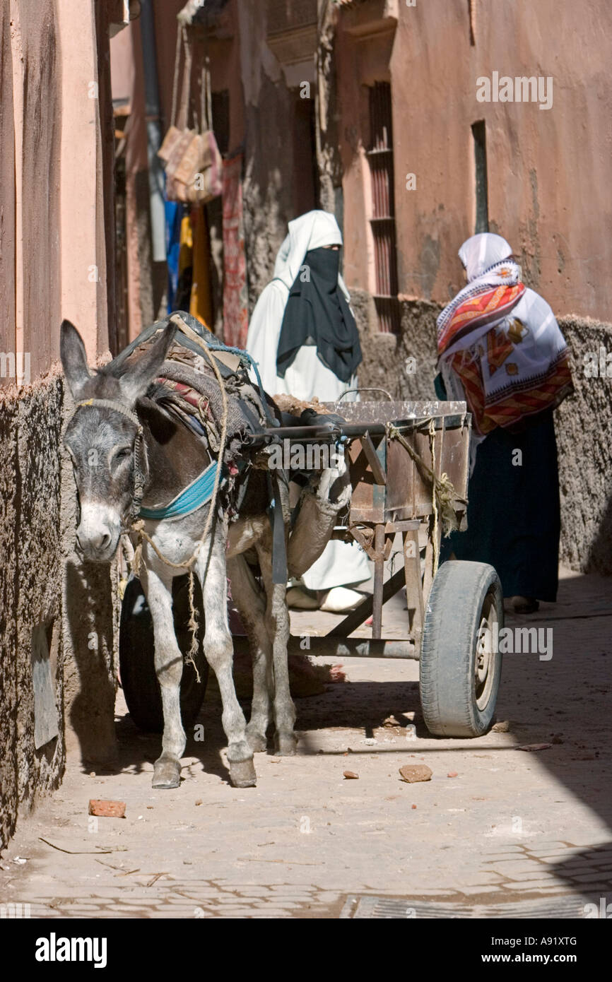 Donkey builders cart women in traditional clothes lane Medina Marrakech Morocco - Stock Image