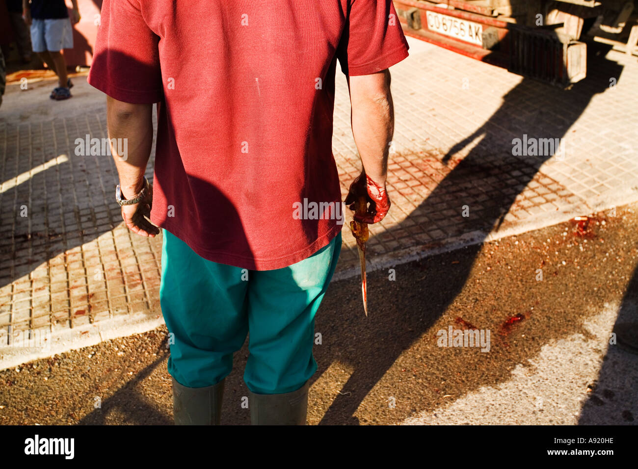 man standing outside bullring with bloody hands and knife in a pool of  blood - Stock Image