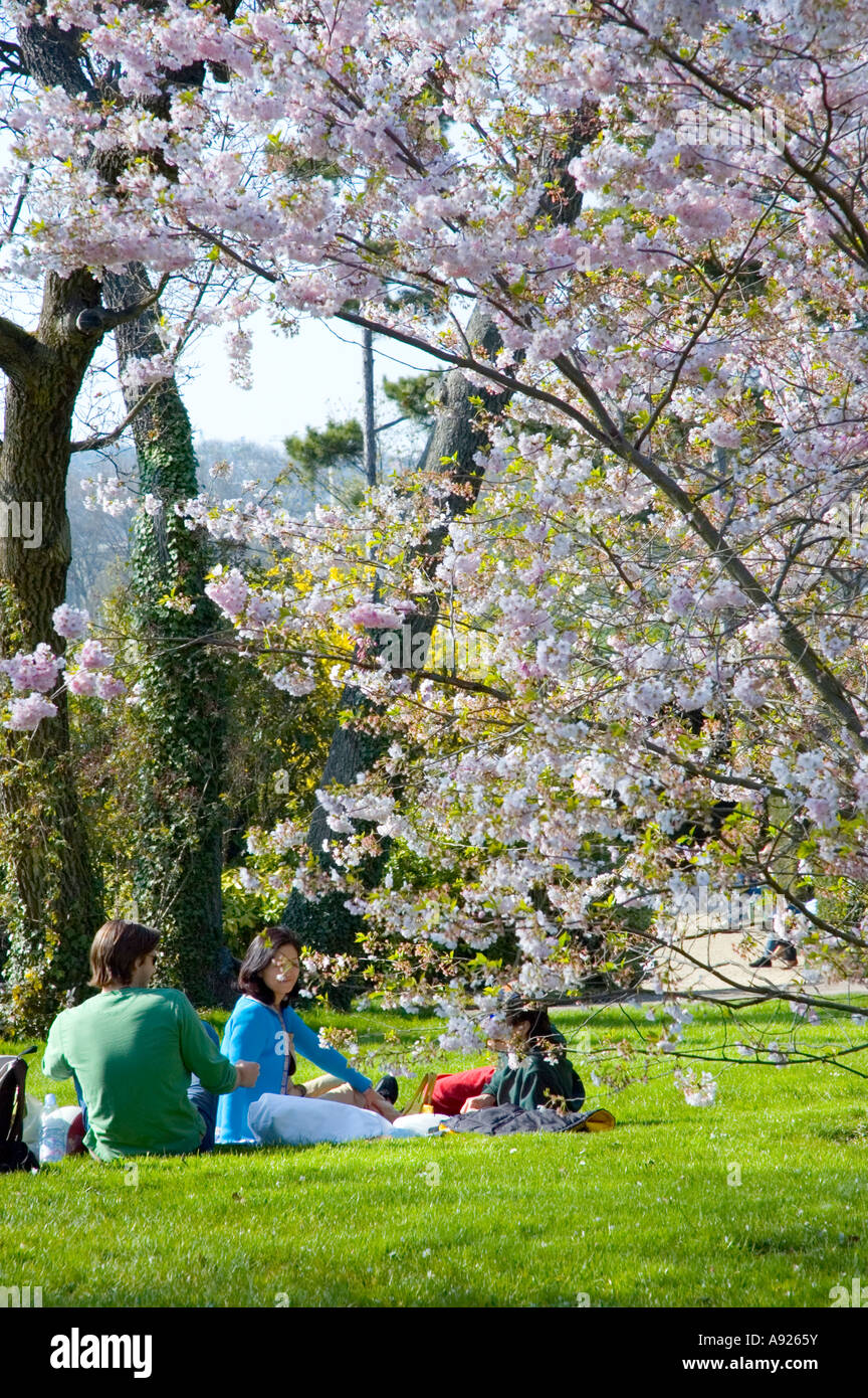 Paris FRANCE, Young Adult Couples Enjoying Nature in Springtime Park 'Bagatelle Garden', Trees Sunday Picnic - Stock Image