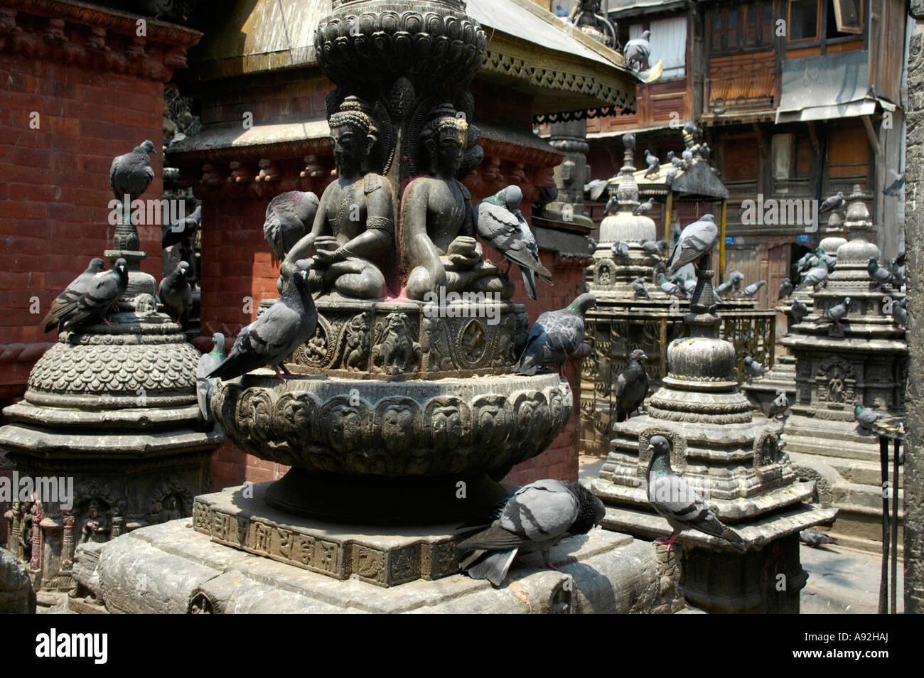 Many shrines chaityas and statues with pigeons in Seto Macchendranath Temple Kel Tole Kathmandu Nepal - Stock Image