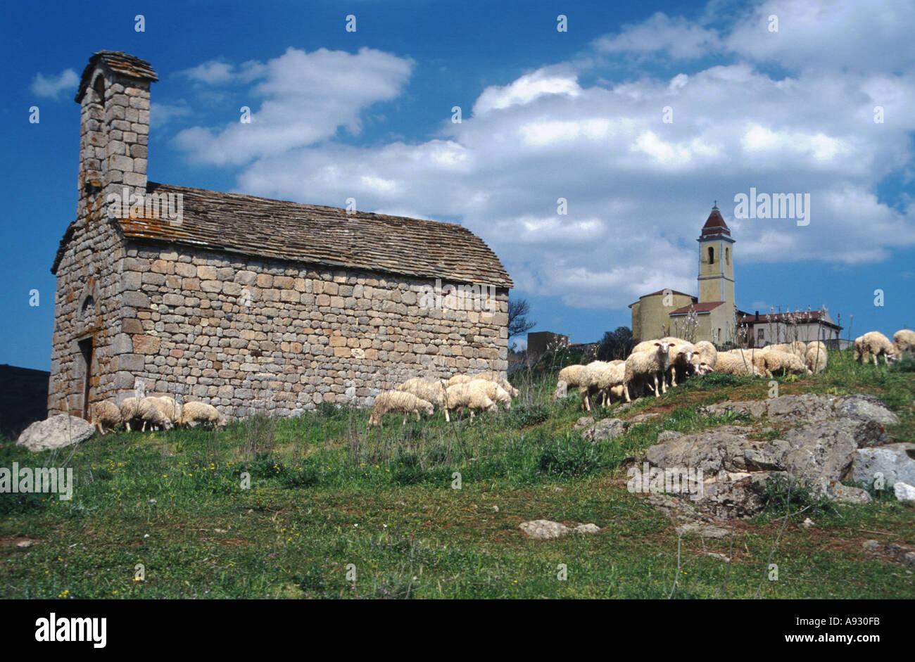 Italy Sardinia scenic with church and chapell near Onani sheeps - Stock Image