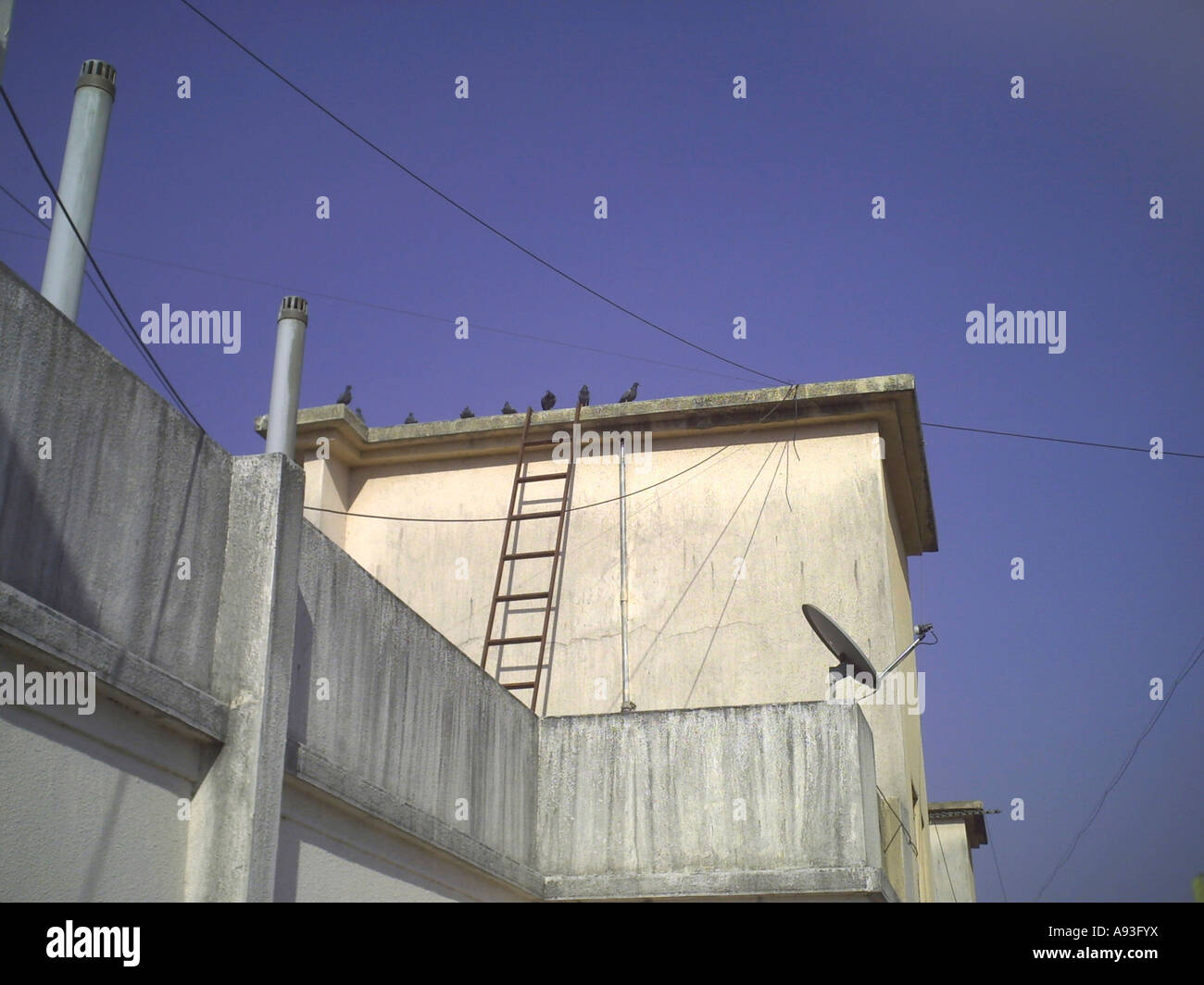 A ladder going towards an overhead water storage tank on a building terrace. Pune Maharashtra India. & A ladder going towards an overhead water storage tank on a building ...